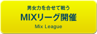 男女混合MIXリーグ